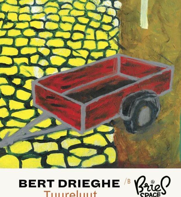 Bert Drieghe – Tuureluut