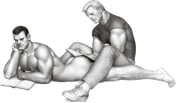 (c) Tom of Finland