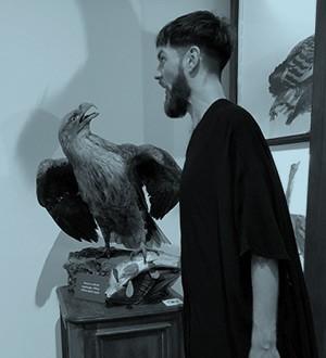 Dennis en de vogel
